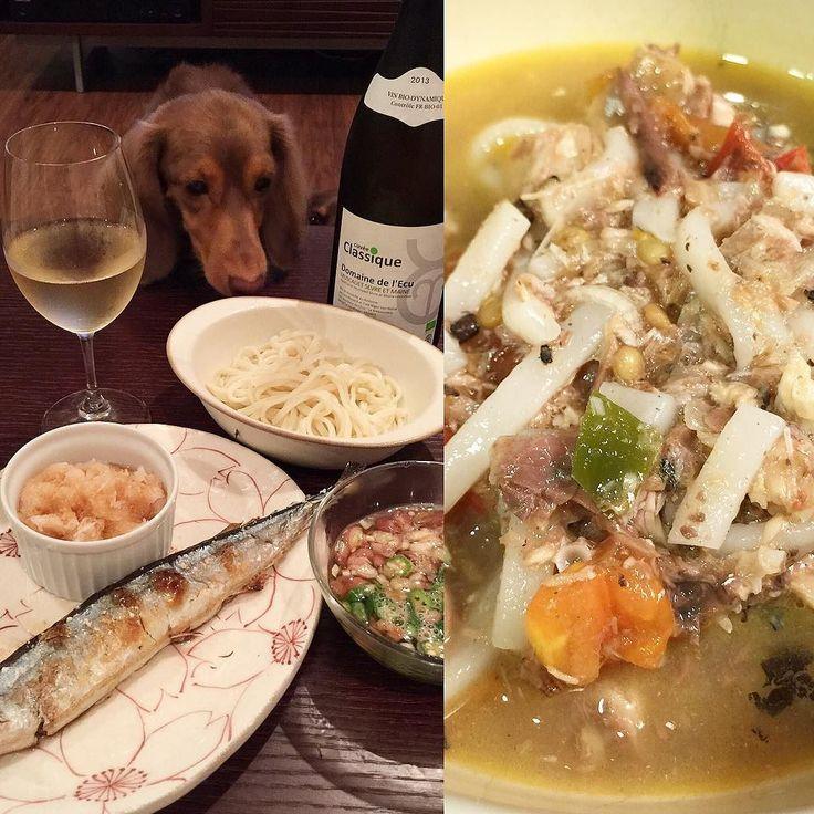 Udon noodle for supper.  今夜はサンマとうどん一家のサンマは圧力鍋で骨をホロホロにしました(_) 頭も内臓もそのまま栄養満点ですトマトとピーマンも入れてみんなハフハフ言いながらバクついてました . #犬 #ダックス #ダックスフンド#短足部#多頭飼い #チョコタン #犬バカ部 #ワンコなしでは生きていけません会#おひとりさまワンコ部 #おひとりさまワンコごはん部#癒しわんこ#犬ごはん#dog#dachs#dachshund #dogsofinstagram #dachstagram #instadachshund #doxie #ふわもこ部 #さんま