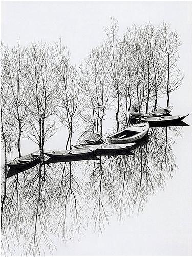 Toni Schneiders    Flood at Lake Skutari, Yugoslavia, 1971