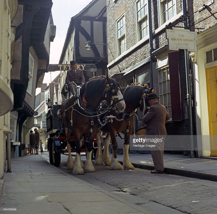 Tetley shire horses in the Shambles, York, North Yorkshire, 1969. The world famous shire horses gave service to the company for 184 years and started their work when Joshua Tetley established his brewery in Leeds in 1822, and used the horses to pull the drays. As deliveries of the barrels started to be made by lorry, the shire horses were kept on for ceremonial and promotional purposes but the Danish owners of Tetley's decided to retire the horses in August 2006 due to the rising cost of…