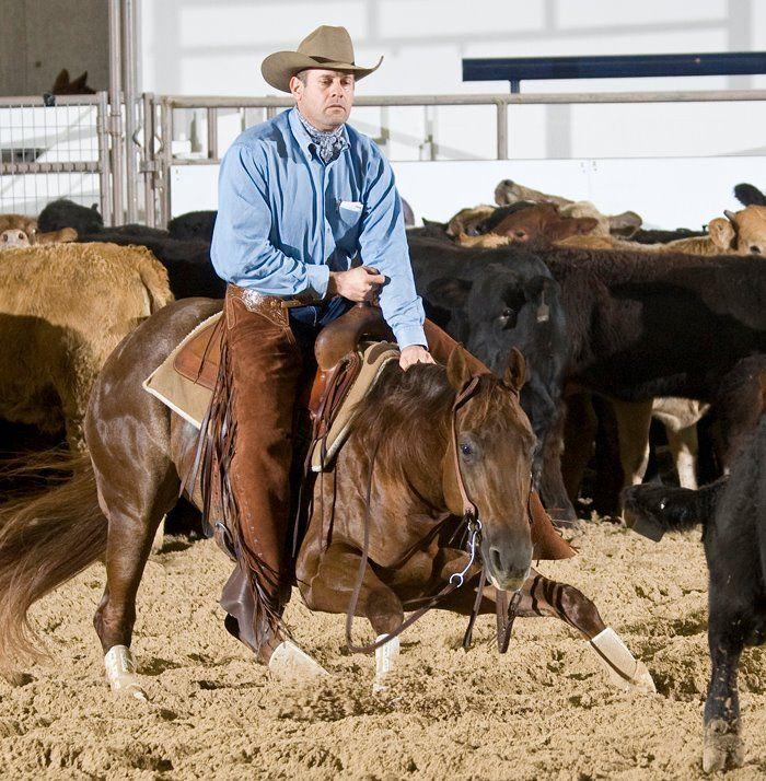 Famous Cutting & Raining Horses