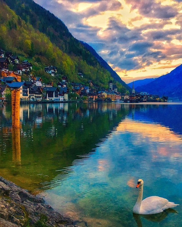 Enjoy your Friday evening ✨ 🔹🔹🔹🔹🔹🔹🔹🔹🔹🔹🔹🔹🔹🔹🔹🔹 #travel #austria #hallstatt #österreich #wowplanet #living_europe #landscape #colors #landscape_captures #naturelovers #ReflectionGram #riserz #discoveraustria #visitaustria #europe_vacations #ok_europe #colors_of_day #photooftheday #PlacesEarth #places_wow #bestplacestogo #TravelAwesome #Discover_Vacations #Wonderful_Vacations #VacationWolf #dreamingtravel #BestVacations #instagram #photooftheday #bestoftheday