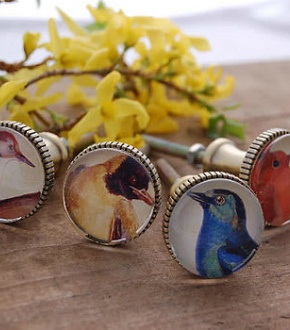 Cabinet Knobs with birds!: Brass Drawers Cupboards, Drawers Cupboards Knobs, Drawers Pulled, Birds Sets, Drawers Knobs, Cabinets Knobs, Products, Cabinet Knobs, Birds Lovers