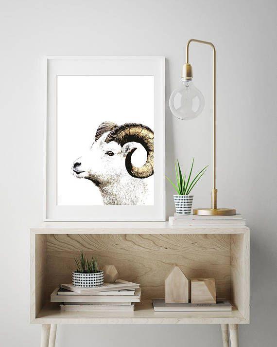 Wild Norwegian sheep  print