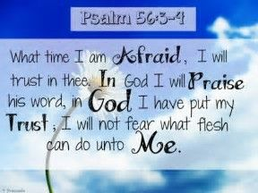 Image result for bible psalm 56