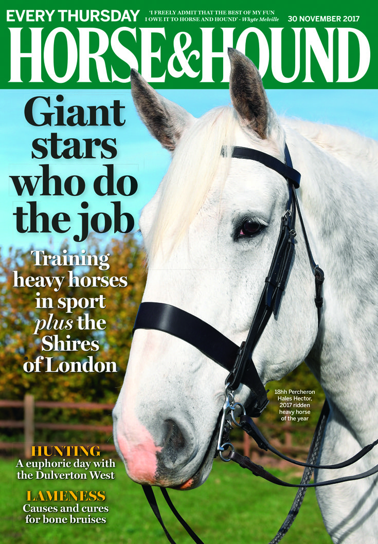 Check out what's inside this week's issue of Horse & Hound (30 November) — on sale now.