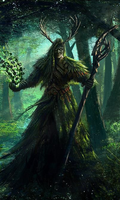 Dwarf Druid Dampd Google Druids Pinterest
