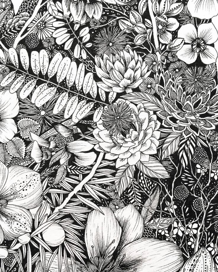 Black and white dense botanical pattern illustration. This uses plants native to California and is part of a larger drawing of the state. I used a pigma micron pen to create this drawing. I'm thinking about making a textile that is similar! By Maggie Sichter @littlepatterns