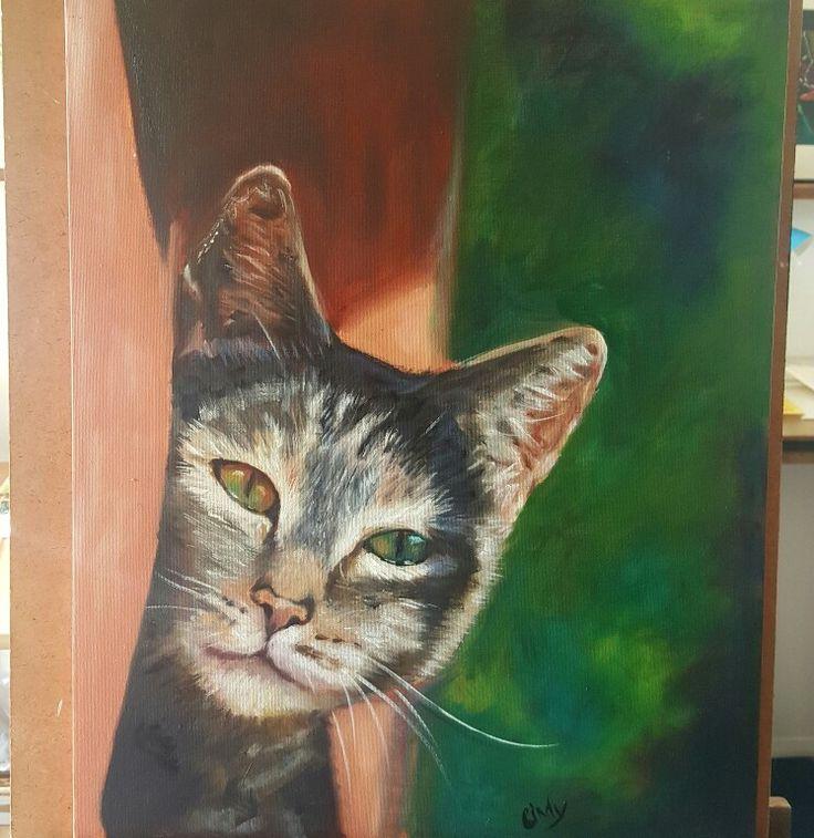 Molly cat ❤ oil