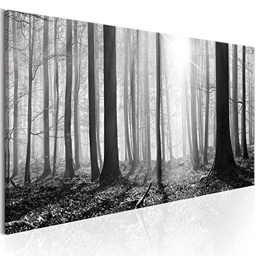murando bilder wald 120x40 cm leinwandbilder fertig aufgespannt vlies leinwand 1. Black Bedroom Furniture Sets. Home Design Ideas