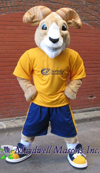 Suffolk University's mascot