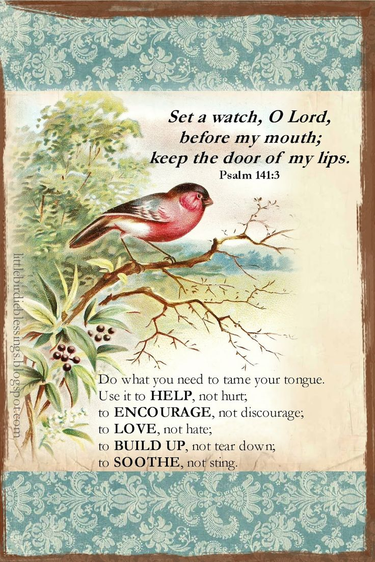 """""""Set a watch, O Lord, before my mouth; keep the door of my lips.""""  (Ps. 141:3) . . . Do what you need to tame your tongue.  Use it to Help, not hurt; to Encourage, not discourage, to Love, not hate; to Build Up, not tear down; to Soothe, not sting."""