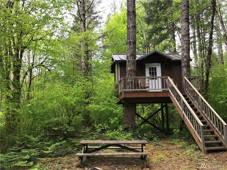 This is a Tiny Treehouse Cabin in Belfair, Washington! The 1.3 acre property islisted for sale on Zillowfor $32,000 as I write this. Please enjoy, learn more, and re-share below. Thanks! Tiny Tre…