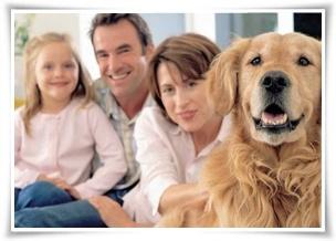 Προϊόντα για το Σπίτι και τα Ζώα της Forever Living Products. #ForeverLivingProducts #Animals #pets #AloeVera