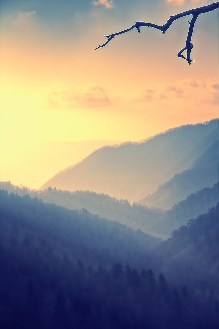The Great Smoky Mountains - Been there several times and I love it! :)