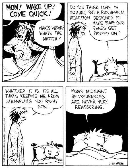 Midnight reassurances for Calvin You can probably relate to both Calvin and his mom here…