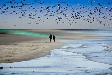Ψυχή μου ταξιδιαρικη Εκεί που ταξιδευεις..... Πρόσεχε μόνο μην χαθείς Και τι ακριβώς γυρεύεις....