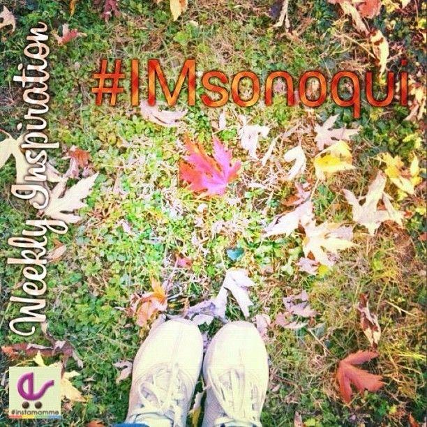 #imsonoqui   Rules @Instamamme - Instagram