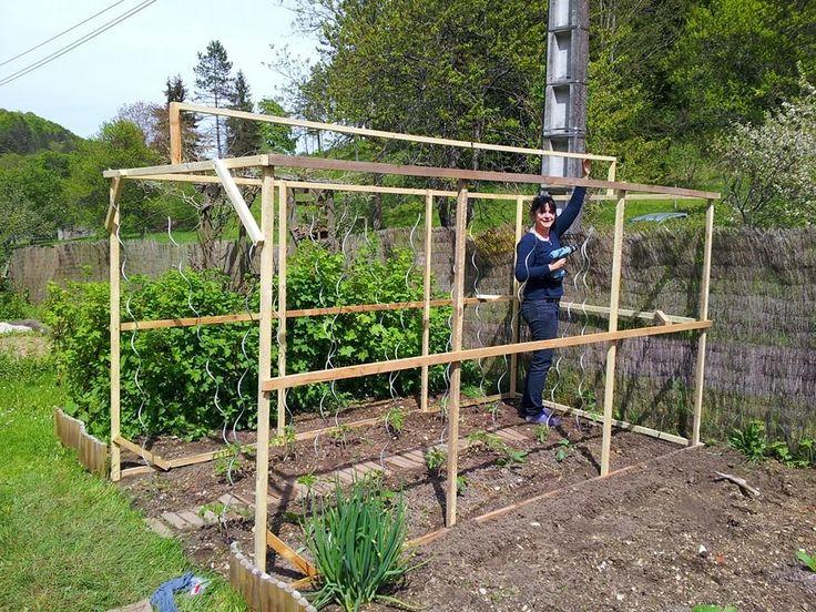 abri tomates recherche google jardinage trellis. Black Bedroom Furniture Sets. Home Design Ideas