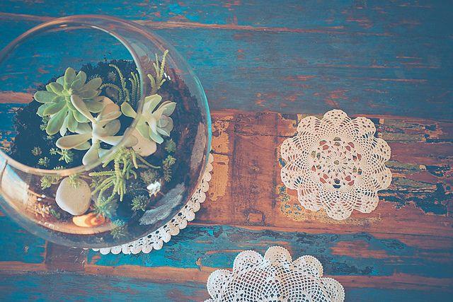 un terrarium… une belle idée cadeau handmade (avec conseils d'entretien)