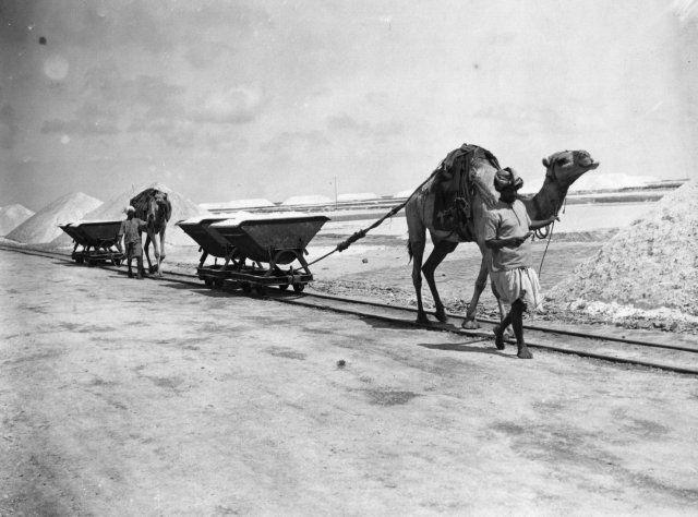 Aden, Yemen, 1920