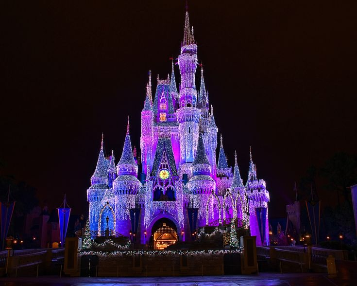 Disney World Castle At Night