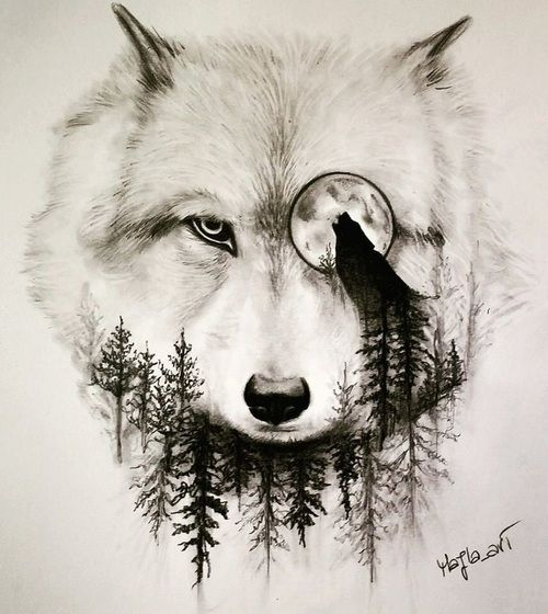 moon, wolf, art, drawing, sketch, forest