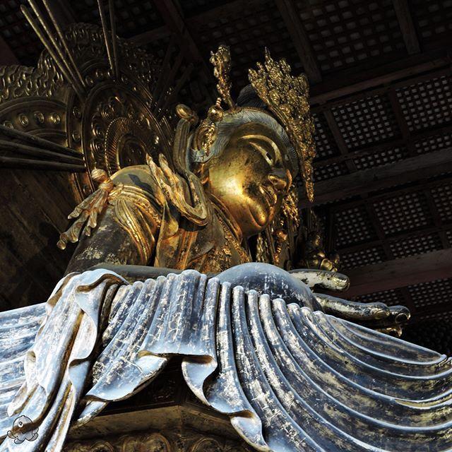 Złoty Budda w świątyni Todaiji.  Golden Buddha in Todai-ji temple.    #nara #japan #japonia #nihon #japon #buddha #budda