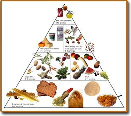 The food pyramid has 6 essential nutrients in this diagram ...