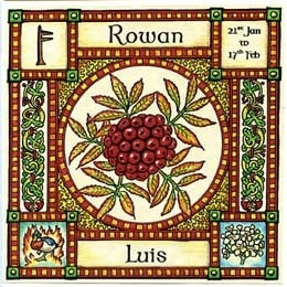 "Neo-Druidism - Rowan, Ogham name Luis, rules 21st January to 17th February and its element is that of Fire. It is also known as ""Quicken Tree"" ~ the tree of life, in Norse it is called ""Runa"" meaning rune or charm for magic."