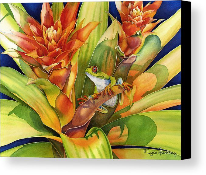 Frog Canvas Print featuring the painting Bright Stars by Lyse Anthony