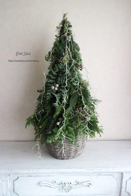 クリスマスツリー Christmas tree