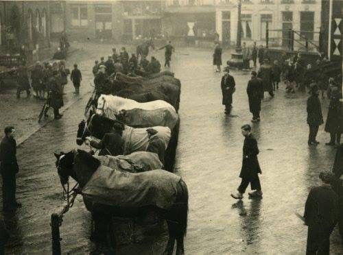 Tot en met 1948 is er jaarlijks een paardenmarkt gehouden in de Lange Kerkstraat & op de Grote Markt van Schiedam. Deze markt bestond al in 1484. In de jaren 1975 & 1989 is deze paardenmarkt wederom georganiseerd.