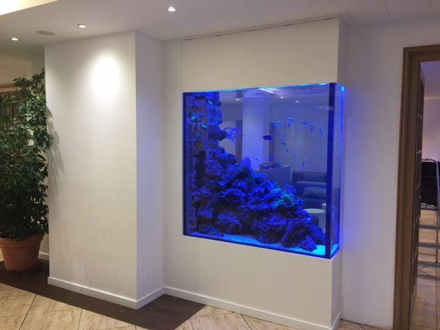 822 best aquarium images on pinterest fish tanks aquarium ideas and aquariums. Black Bedroom Furniture Sets. Home Design Ideas