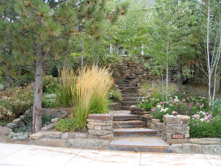 using grasses in landscaping google search curb appealgarden designgrassesbackyard - Garden Design Using Grasses