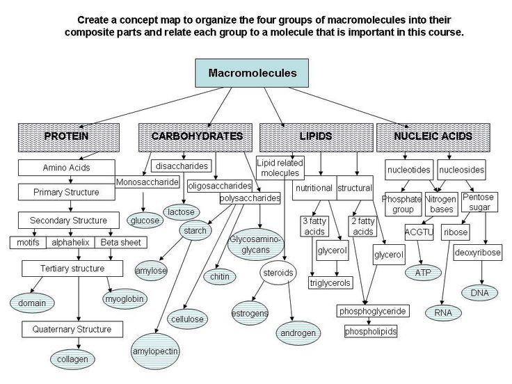 biochem steroids review