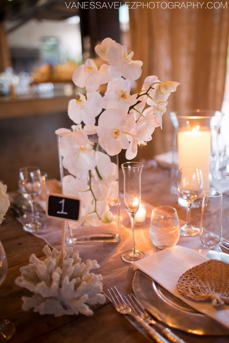 White orchids inspire this Villa Montana Beach Resort Reception!