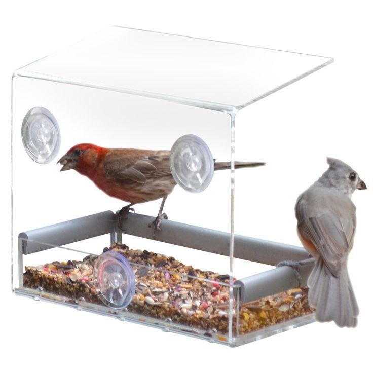 PetFusion Vogelfutterhaus fürs Fenster: Amazon.de: Haustier