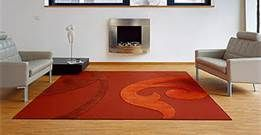 Using professional carpet steam cleaning equipment, Cleaning Plus provides expert steam carpet cleaning services.