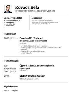 profession önéletrajz szerkesztése Önéletrajz készítő, szerkesztés   Profession.hu | Csányi Mátyás  profession önéletrajz szerkesztése