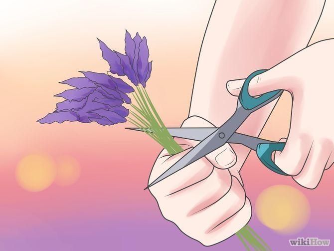Make Lavender Oil Step 1 Version 2.jpg
