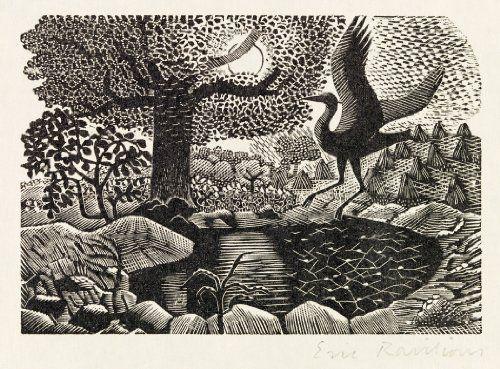 "Eric Ravilious (British, 1903-1942). A heron landing, for a later edition of the ""Natural History of Selborne"" by Gilbert White. 1937. (wood engraving)"