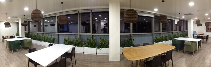 STEEL PLUS White for DKV Building Project #office #deco #plants #elegant #hydroplanter #dinningroom #hobbyflower
