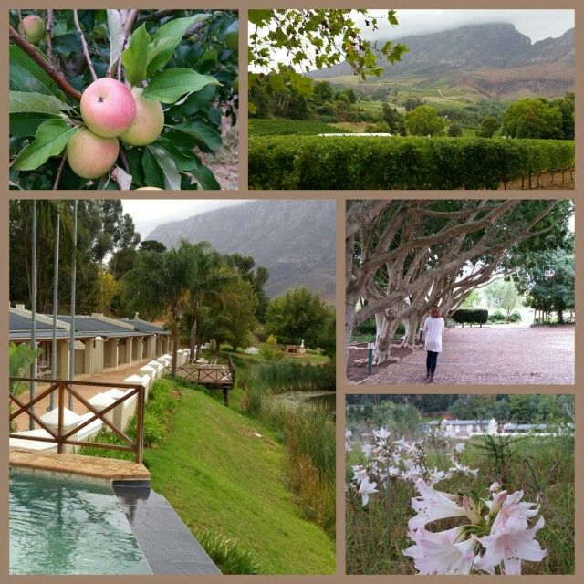 Le Pommier Wine Estate, Western Cape SA