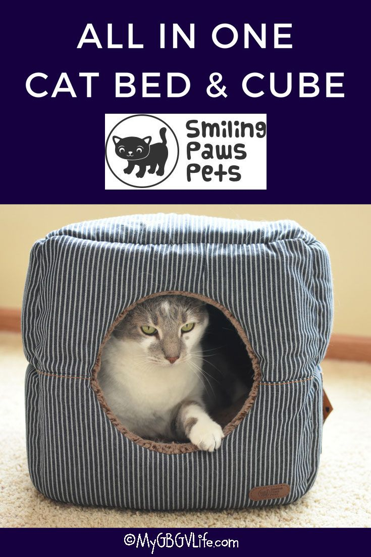 My GBGV Life All In One Cat Bed And Cube from @smilingpawspets Your cat will love the lounger and the cube! Get 15% off with our promo code! #sponsored