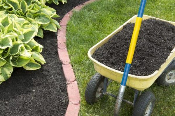 Planting grass seed in an existing lawn improves thinly growing grass and prevents warm-season lawns from turning brown over winter. Also called overseeding, sowing grass seed in lawns is part of general lawn renovation, including controlling weeds, improving soil condition and supplying fertilizer. You can overseed a lawn in spring or early fall,...