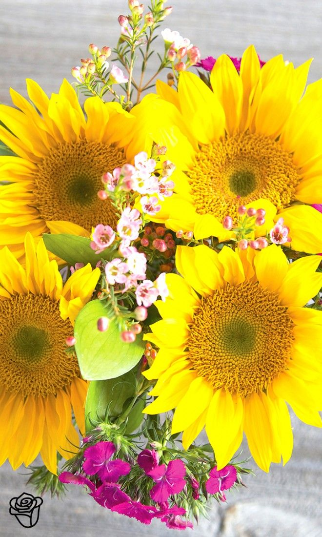 Love sustainable flowers shipped straight from farms on the California coast to your recipient's door