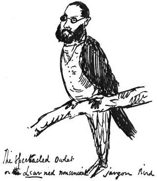 17 Best Images About Edward Lear On Pinterest Cats