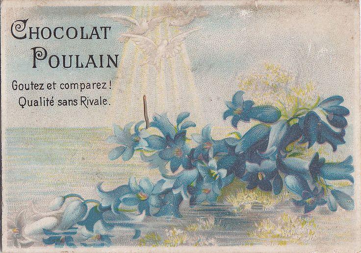 CHROMO CHOCOLAT POULAIN  - SPRAY 0F BLUE BLUEBELL LIKE FLOWERS WITH THREE WHITE DOVES FLYING ABOVE | par patrick.marks