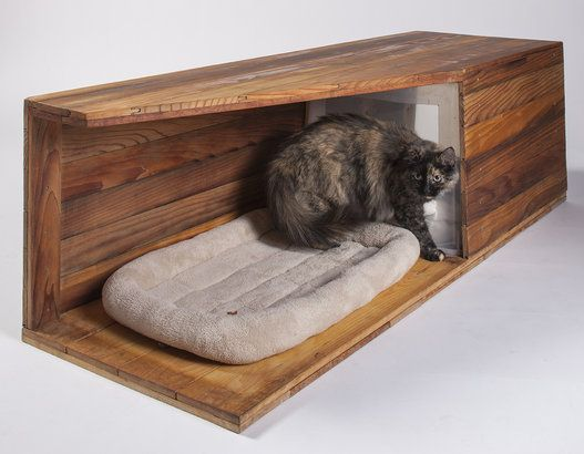 Beautiful eco cat bed made from wood