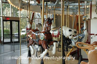 Rose Carousel. #carousel #butchartgardens #exploreBC #victoria #gardens